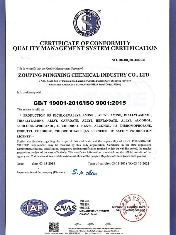ISO9001-英.png