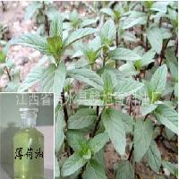 buy Peppermint oil in bulk