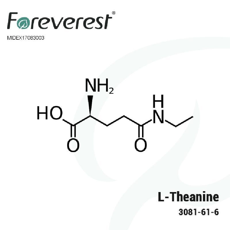 buy L-Theanine Medical Grade