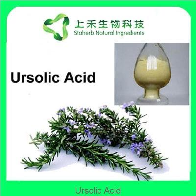 buy Ursolic Acid 25-98% of staherb