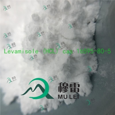 Cheap price  safe delivery Levamisole white powder cas 16595-80-5 to USA