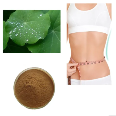 buy Louts Leaf Extract powder 99% Brown Powder 475-83-2