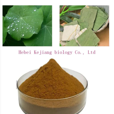buy Louts Leaf Extract 99% powder 475-83-2