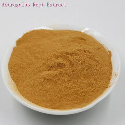 buy Astragalus Root Extract 10%