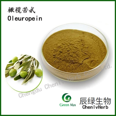 buy Olive leaf extract Oleuropein 20% chenlv